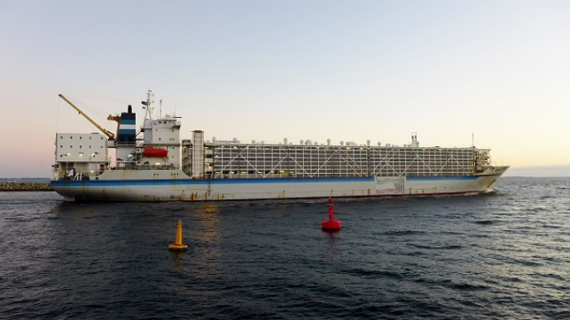 The Al Shuwaikh in Australia in 2014