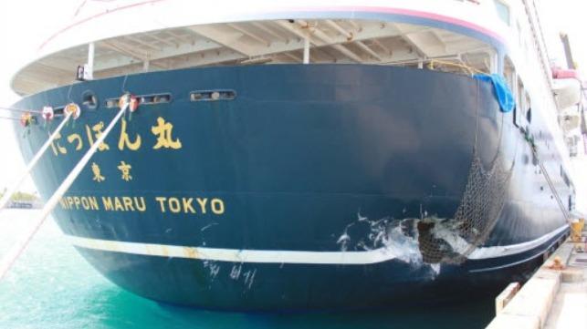 damage to the Nippon Maru
