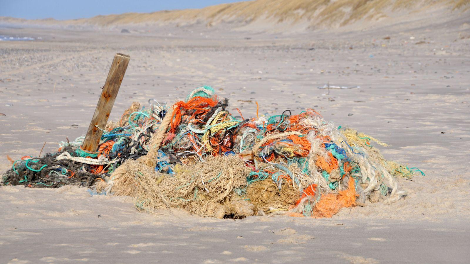 Ocean Litter Portal Established