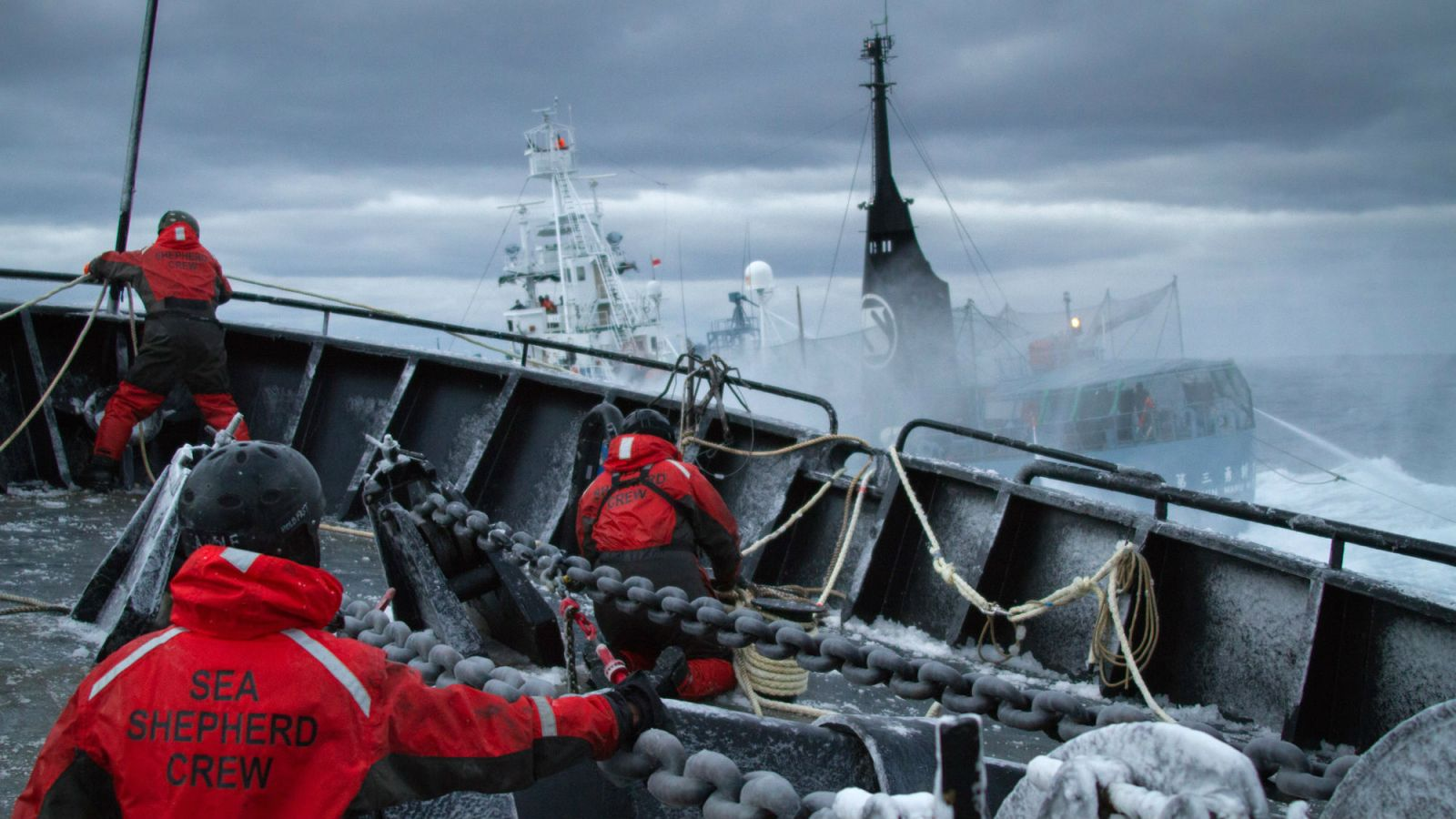Sea Shepherd ship