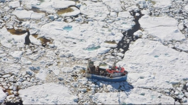 A crab fishing boat trapped in the multiyear sea ice off the Newfoundland coast. Credit: David G. Barber.
