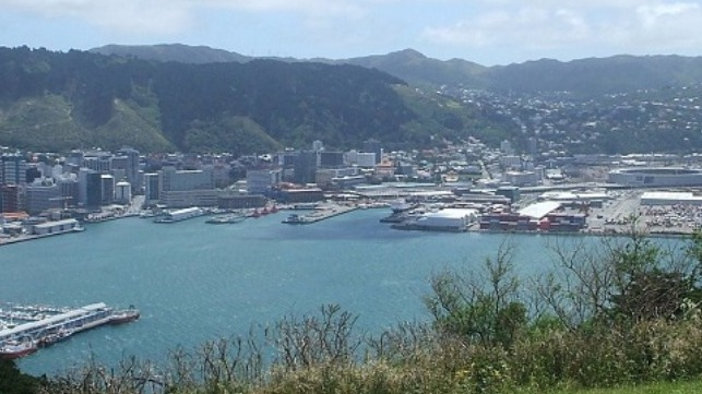 file photo of Wellington