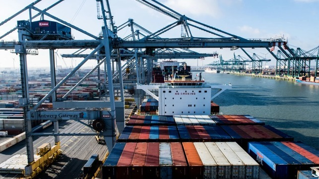Antwerp reports rebound in container volumes and transshipments