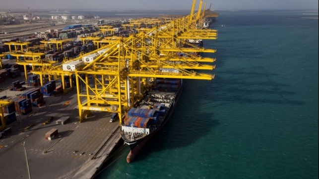 DP World reports volume declines due to COVID-19 as it continues acquisitions