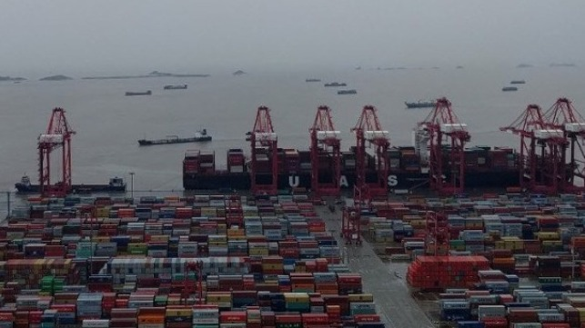 record container volume at Shanghai