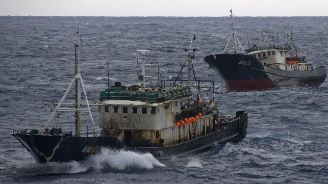 Activists concerned of Chinese fishing