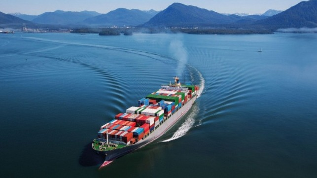 Uncertainty ahead for ocean freight rates after declines in 2020 due to the impact of the coronavirus