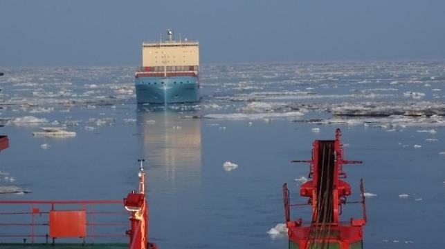 Venta Maersk