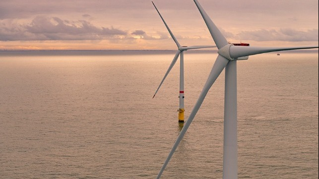 Japanese business offshore wind market growth