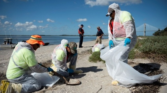 Responders with the St. Simons Sound Incident Unified Command shovel and bag oiled debris as part of a response to environmental impacts on Quarantine Beach, Brunswick, Ga., Sept. 23, 2019.